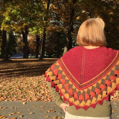 Butterfly Redeux Shawl